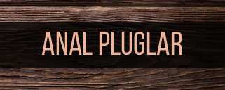 Anal Pluglar