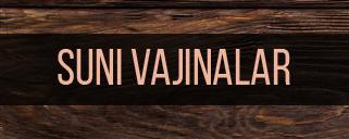 Suni Vajinalar